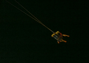 2 people swinging at Coney