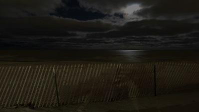 fb moonlit Lee St Beach