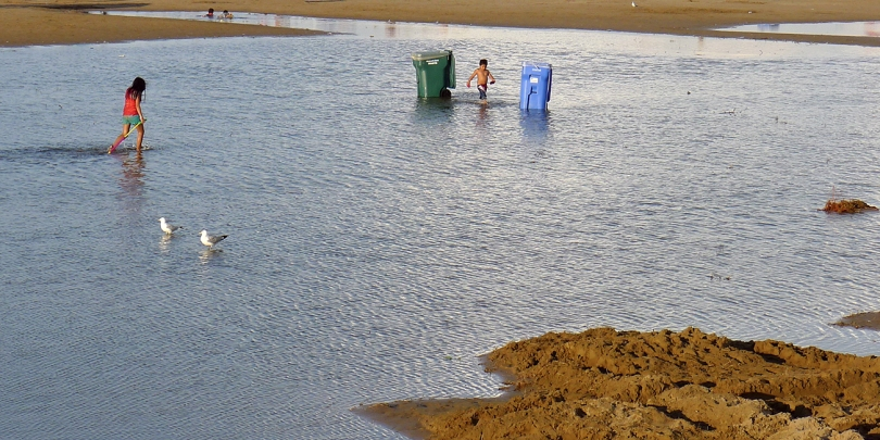 FB foster st beach scenen