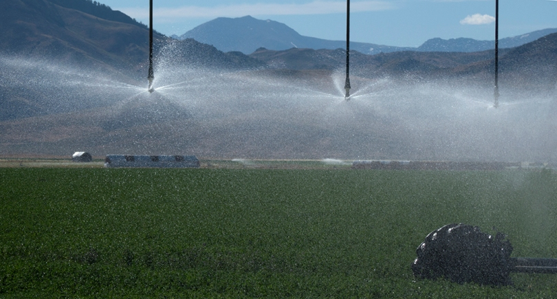 FB mountains and sprinklers, wheel only