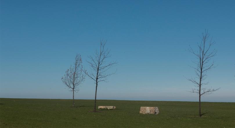 2 stones 3 trees