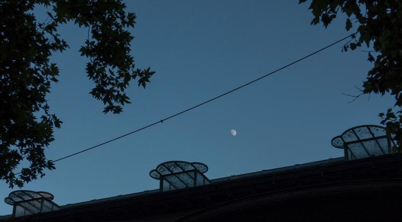 3 windows moon