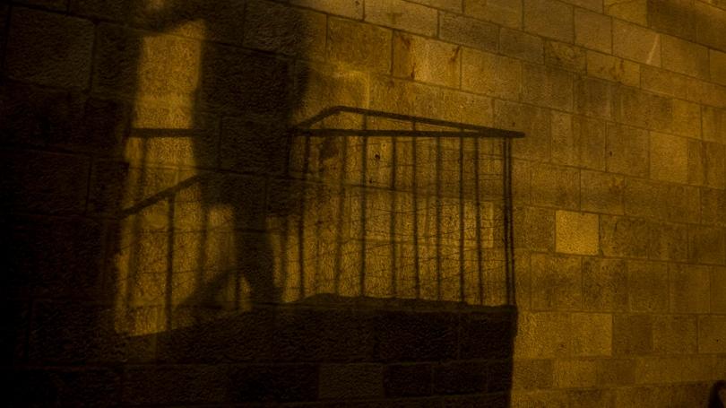 olivier shadow 2