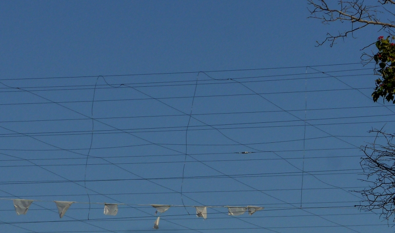 wire and trash 2