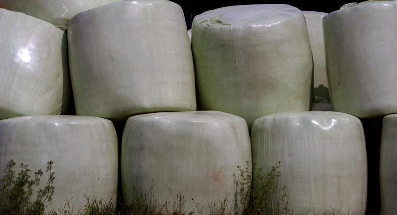 plastic packed hay balls