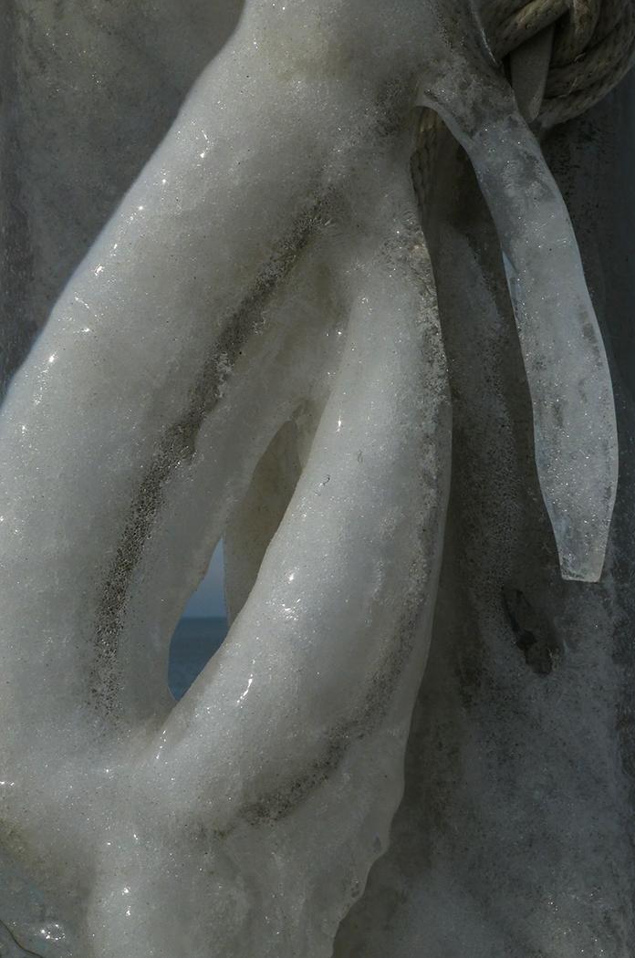 wp ice loop